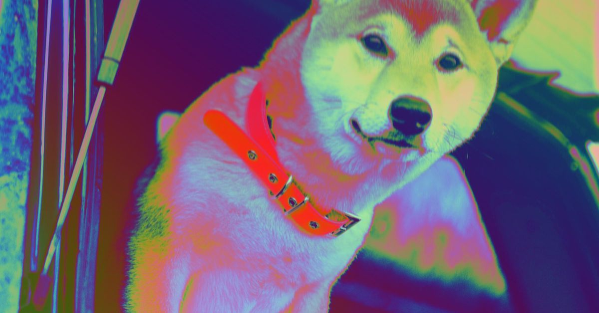Shiba Inu Jumps 70% to Surpass Market Value of Robinhood – Where It's Not (Yet) Listed